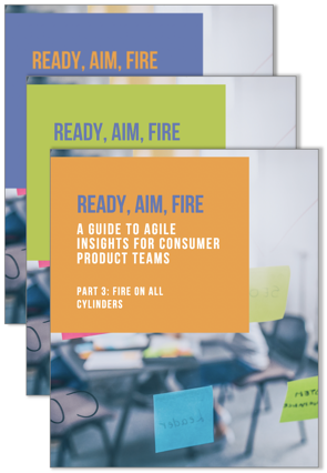 agile eBook series